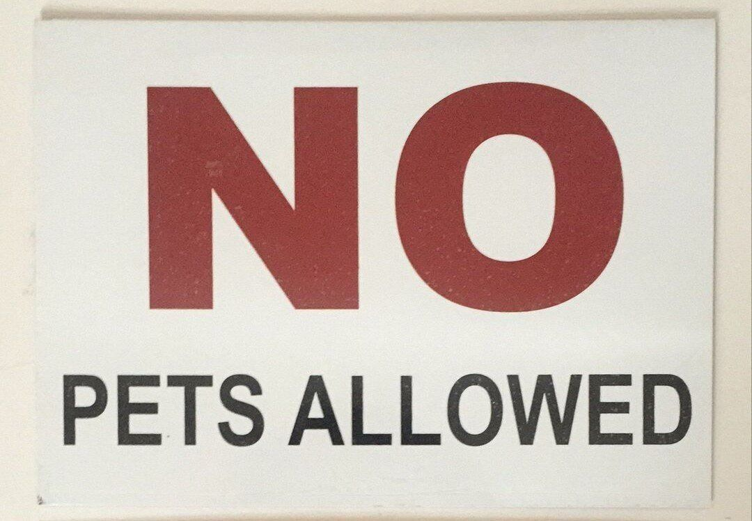 no pets allowed sign white aluminum sign 5x7 aluminum signs