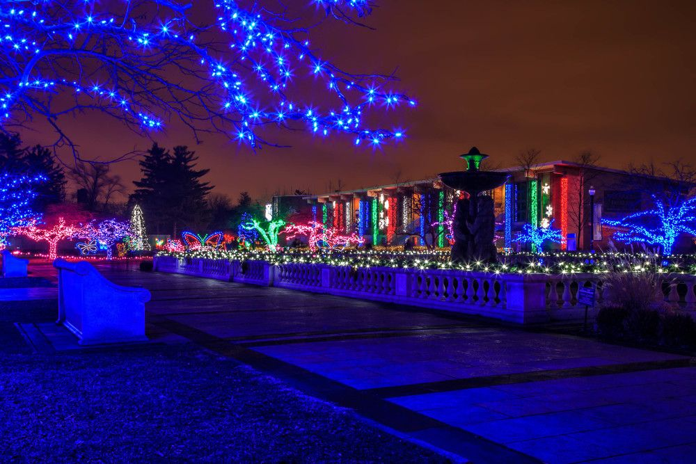 Detroit Zoo | Wild Lights | DTW | Pinterest | Detroit zoo and City ...