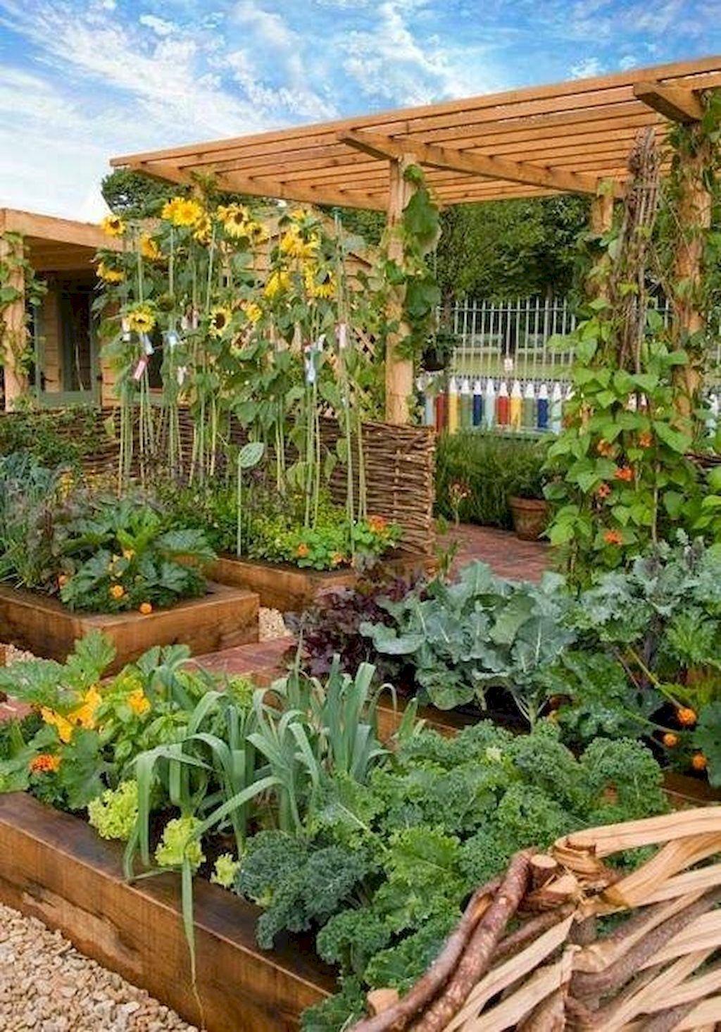 80 Affordable Backyard Vegetable Garden Design Ideas Plants Vegetable Garden Design