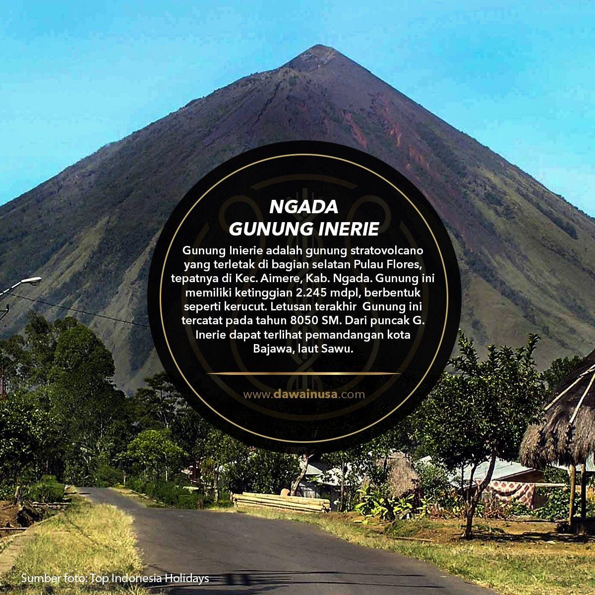 Pin Di Album Dawai Nusa