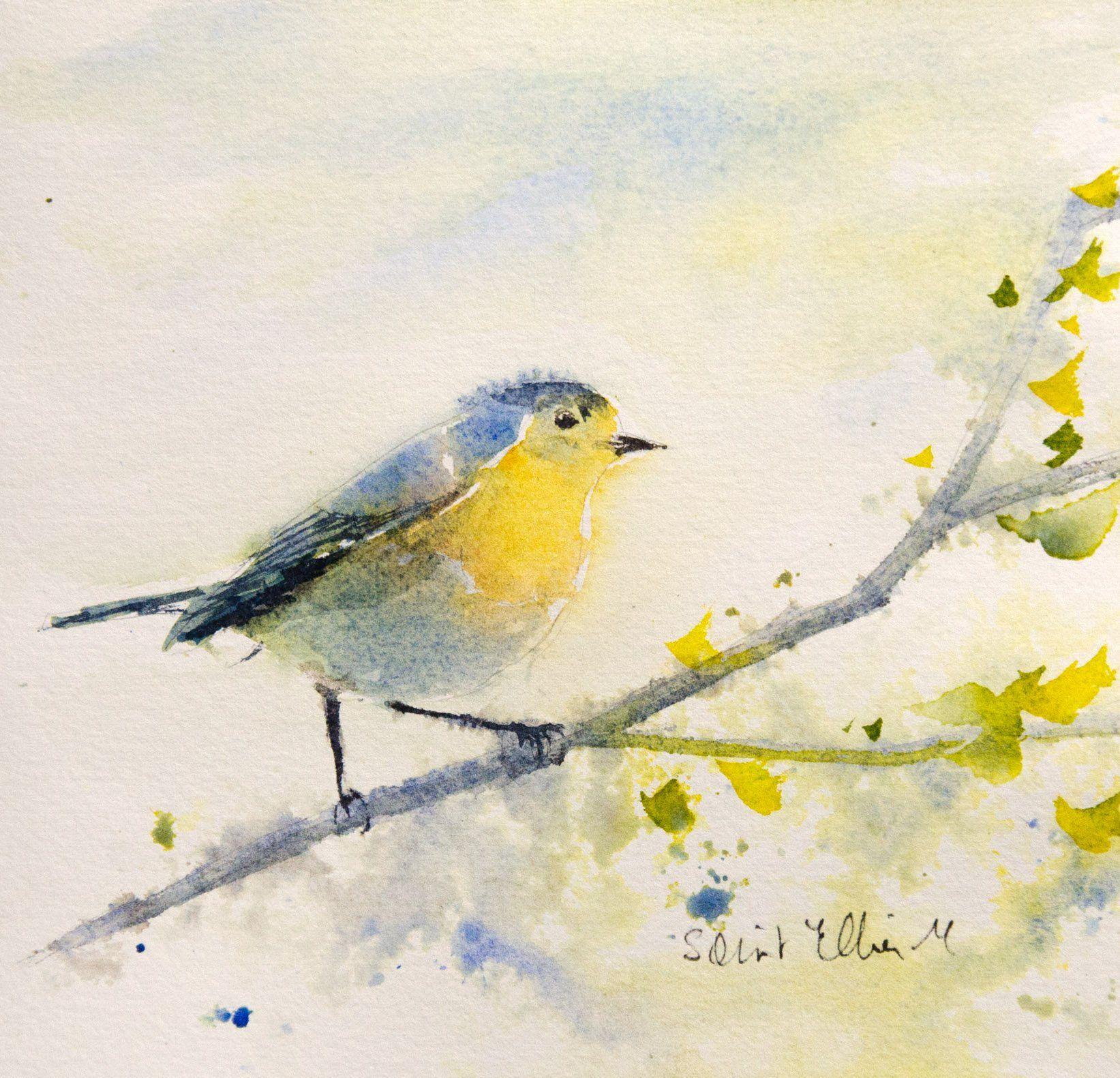Peinture Originale D Un Petit Oiseau Sur Une Branche Aquarelle