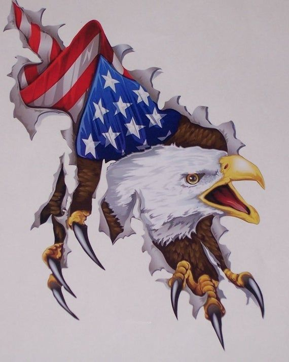 American Flag Eagle Ripping Slant Window Yeti Cup Camper Motorhome or Trailer Mural Available in 6 s