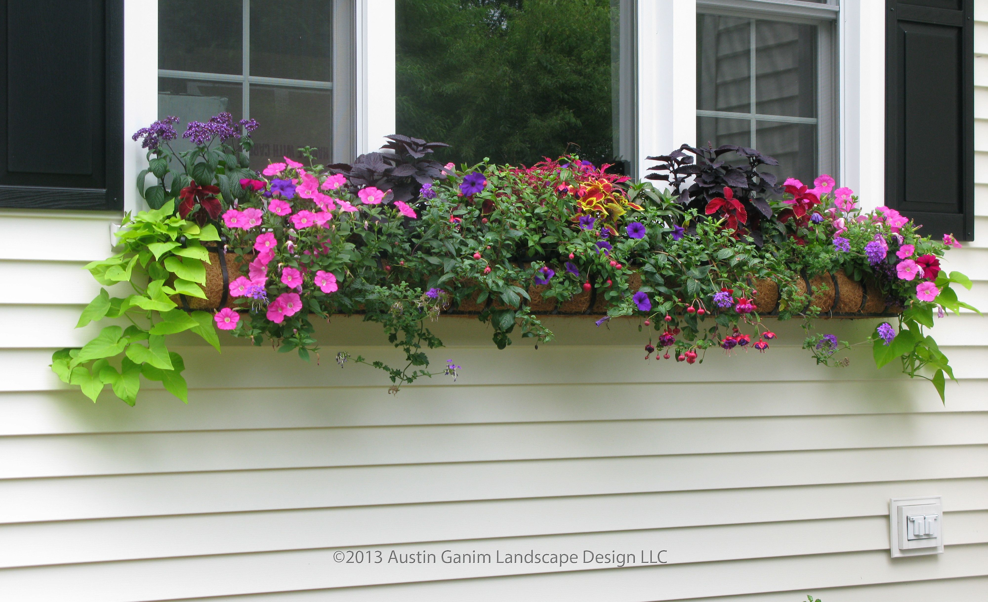 Unique Balcony Flower Box