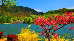 Natural Beauty Of Kashmir Wallpaper Google Search Cool Places To Visit Places To Visit Tourist Places