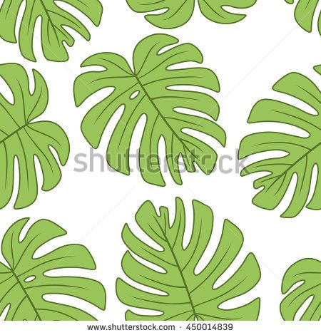 leaf of monstera deliciosa plantvector seamless pattern endless texture can be used for