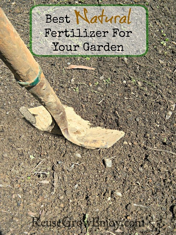 Having A Great Garden Starts With Great Soil Check Out 400 x 300