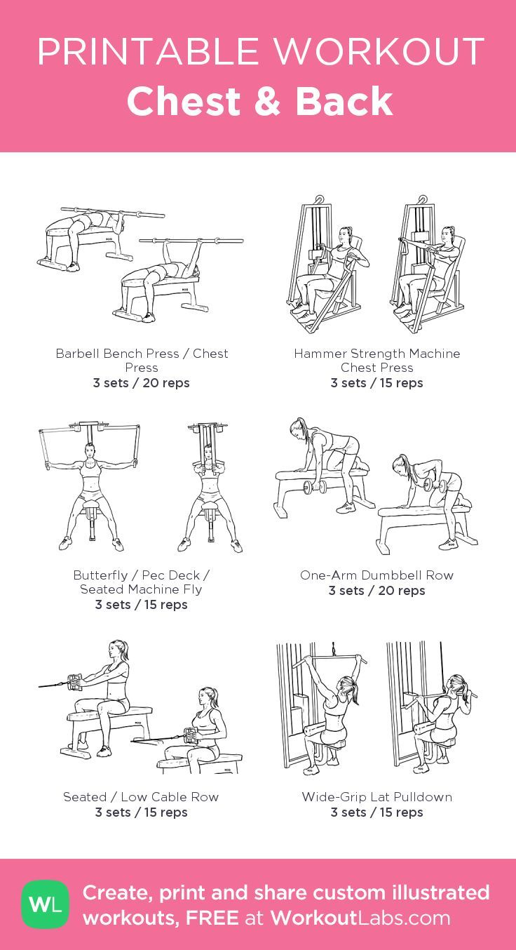 Chest & Back: My Visual Workout Created At WorkoutLabs.com