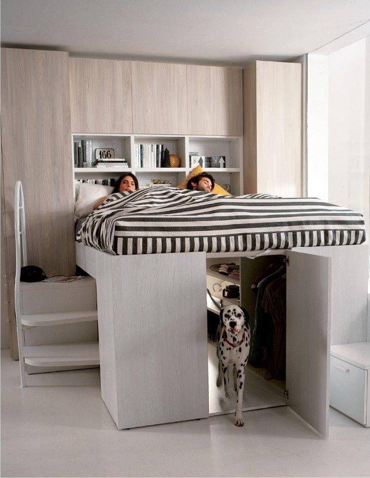 Cama closet dog …  Pinteres…