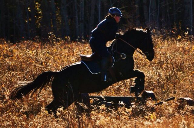 My horse and I jumping over a wagon in x country field this fall.