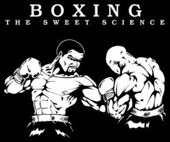 Conventional Boxing Vs. MMA Striking, The Importance Of Understanding Their Differences
