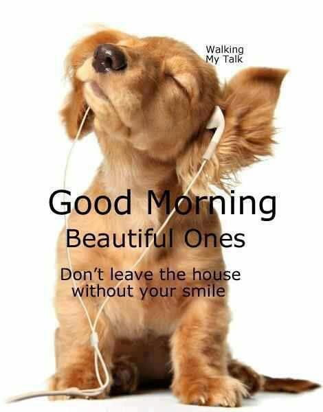 Good Morning Pets Are Human Too Pinterest Animals