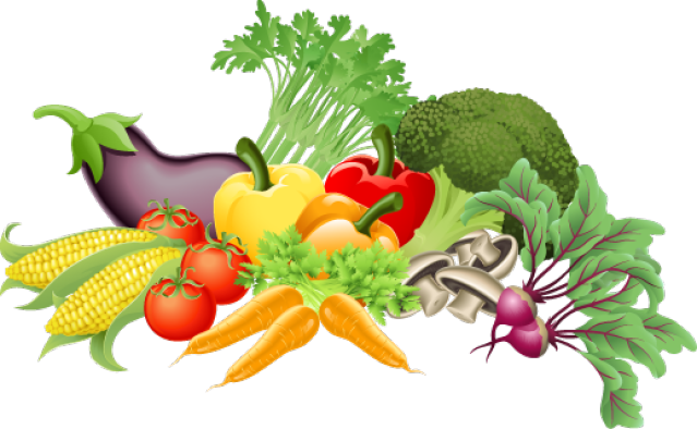 Photoshop   Vegetable illustration, Vegetables, Fresh vegetables