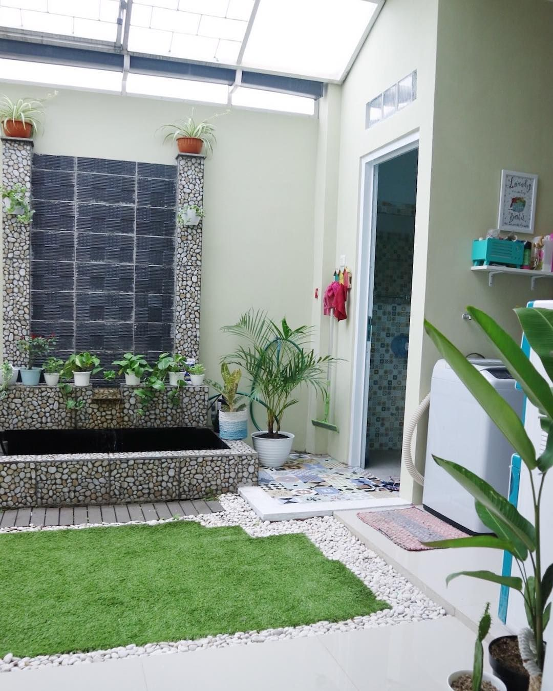Image May Contain Plant Indoor And Outdoor Ide Halaman