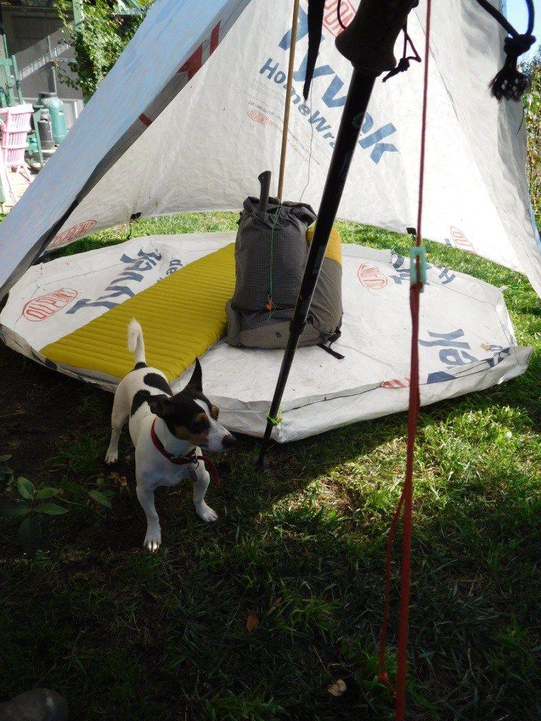 New Decagon Octagon Tyvek Igloo Tent Design Less than kilo; room for 2+ & New Decagon Octagon Tyvek Igloo Tent Design: Less than kilo; room ...