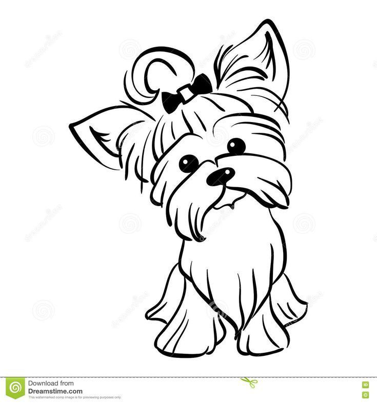 Vektor Skizze Lustige Yorkshire Terrier Hund Sitzen Stock Vektorgrafik Illustration Of Hund In 2020 Puppy Coloring Pages Dog Coloring Page Yorkshire Terrier