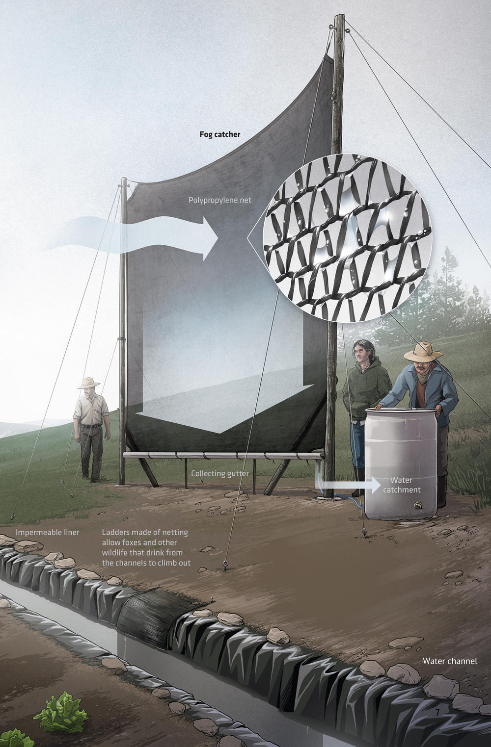 Harnessing Fog Could Help Farmers In A Changing Climate Magazine