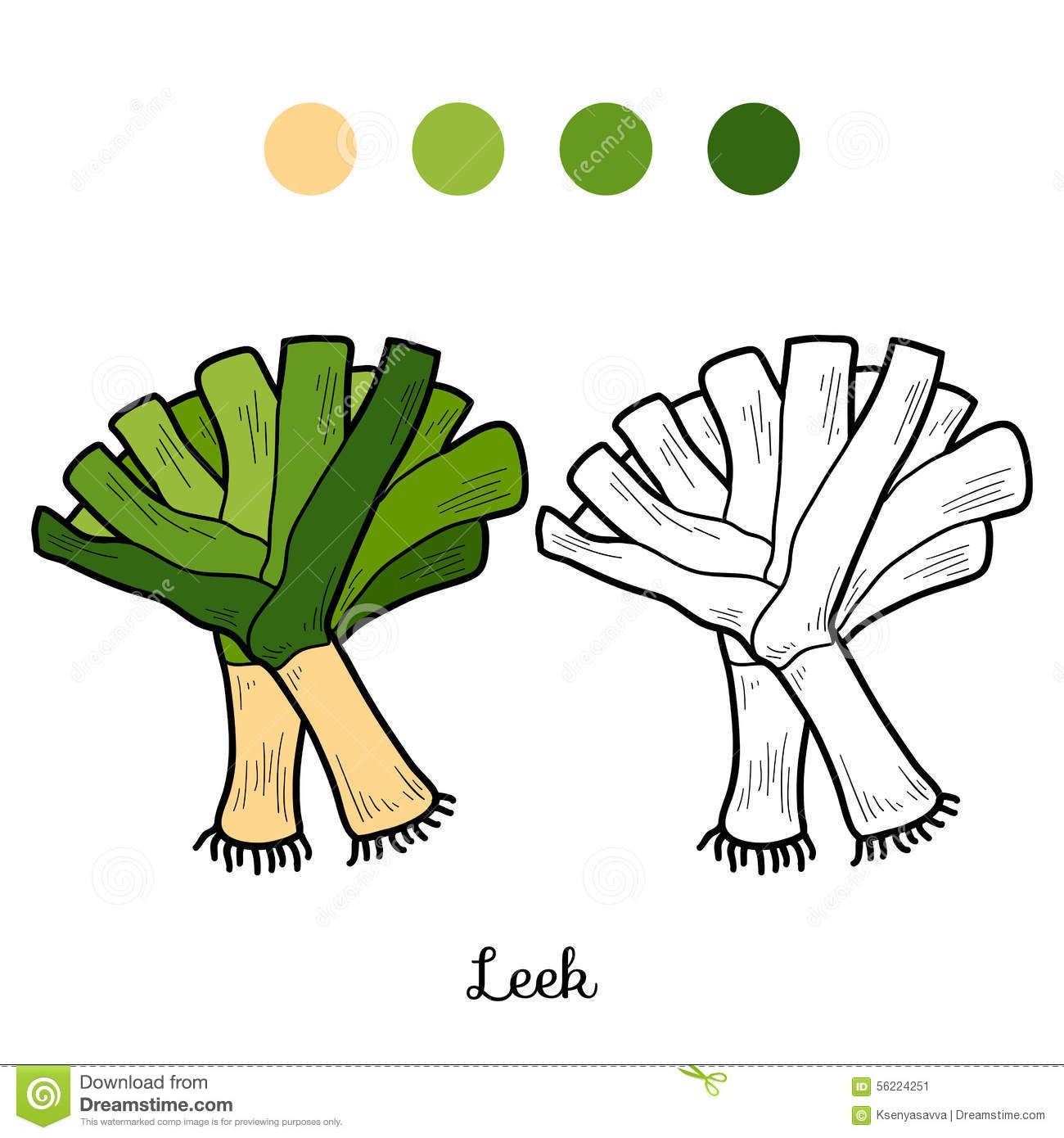 Coloring Book: Fruits And Vegetables (leek) Stock Vector - Image ...