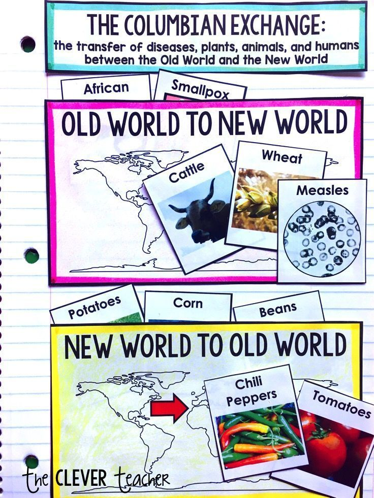 In This 2 Week Unit Students Will Learn All About The Age Of