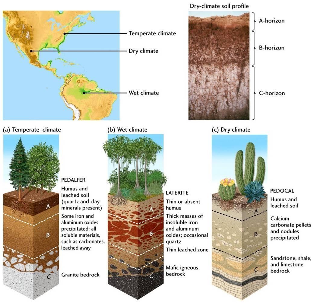 Soil Layers Task Montessori - Google Search