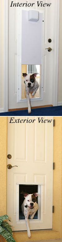 Plexidor Electronic Pet Door With One Touch Programming Using