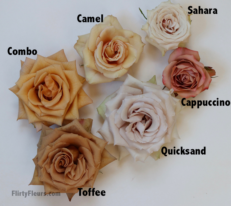 Brown Rose Color Study With Mayesh Wholesale Flirty Fleurs The Florist Blog Inspiration For Floral Designers Wedding Flower Arrangements Rose Rose Color