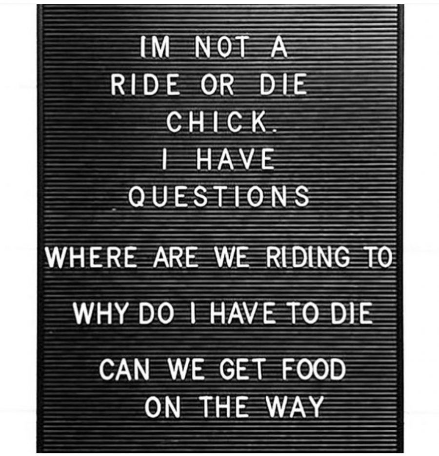 Image Result For Cycling Quotes Workout Quotes Funny Fitness Quotes Funny Gym Humor Funny Quotes