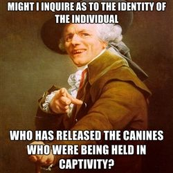 Joseph Ducreux - Might I inquire as to the identity of the individual Who has released the canines who were being held in captivity?