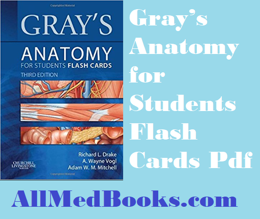 Download Grays Anatomy For Students Flash Cards Pdf 3rd Edition