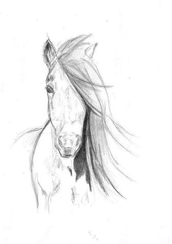 Malia Art Watercolor Painting Print 8x11 Animal Horse Home Decor Illustration Black And White