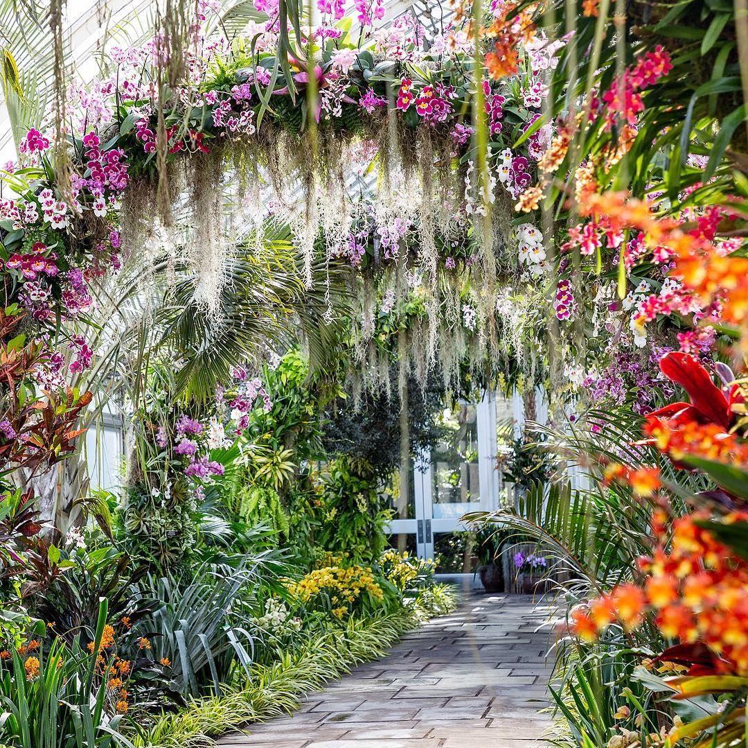 12b5b3350f4c9b4b18e81ee6ae6c7b7e - What's Happening At The Botanical Gardens