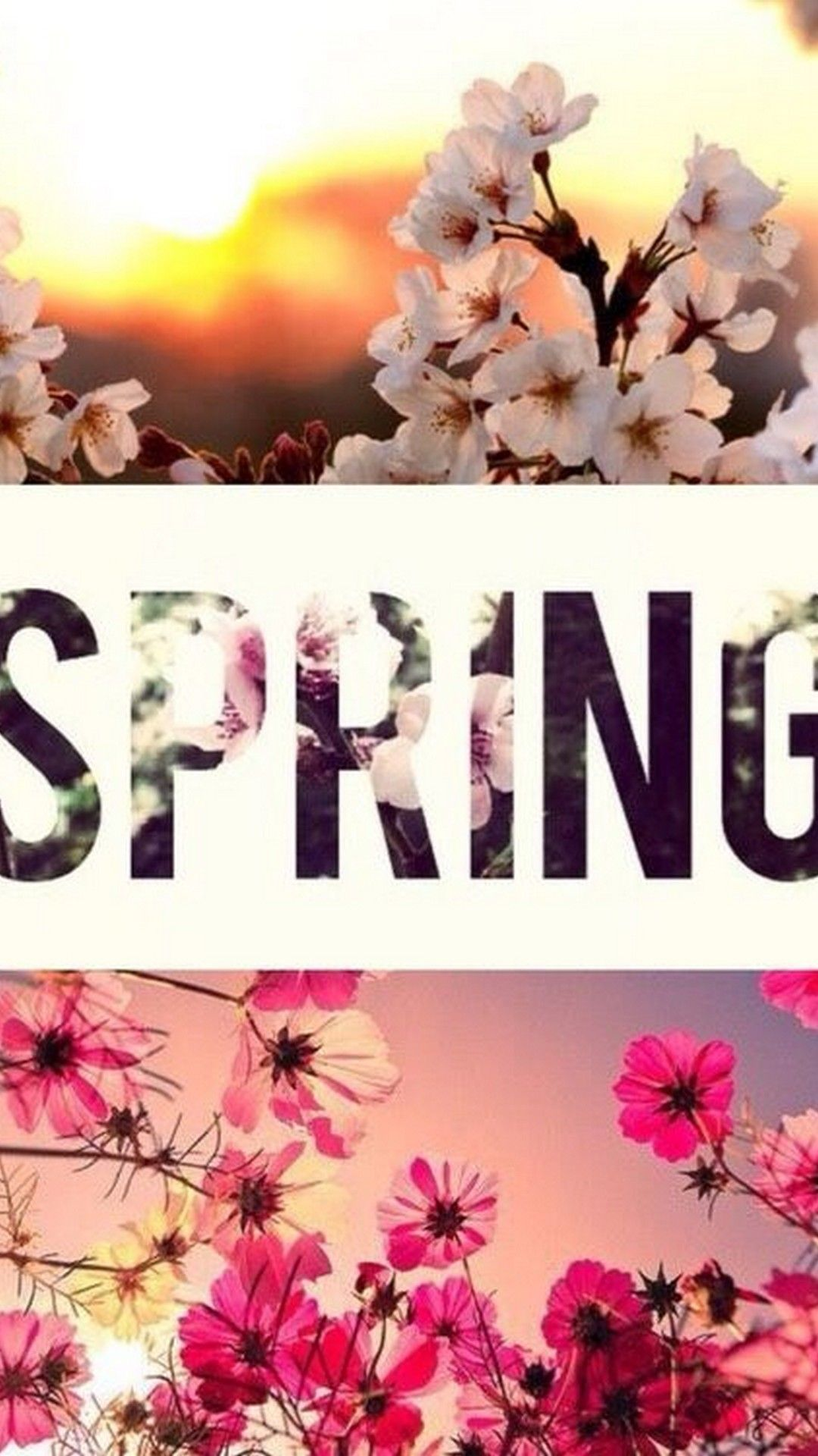 Spring Wallpaper Widescreen » Hupages » Download Iphone