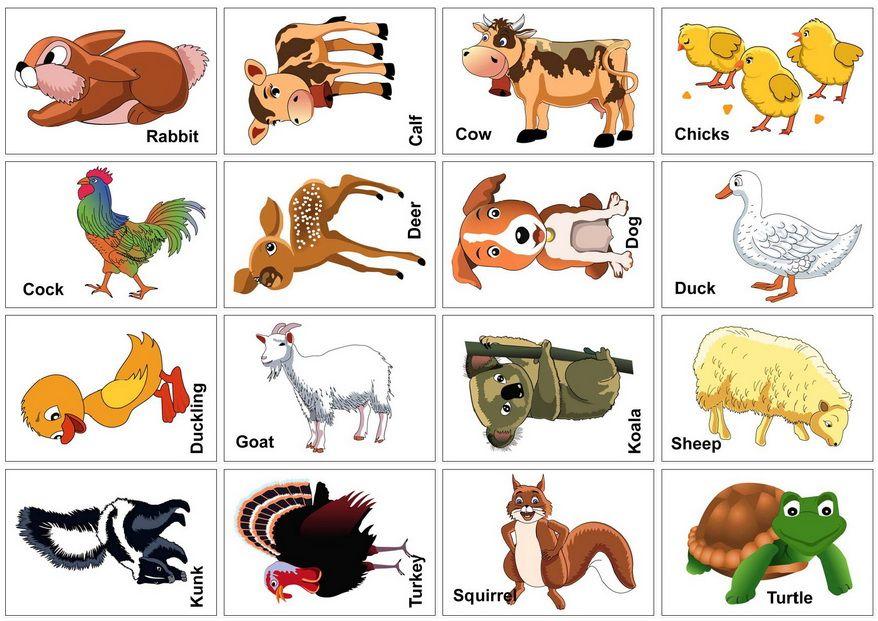 Farm animal flash cards printable printable animal