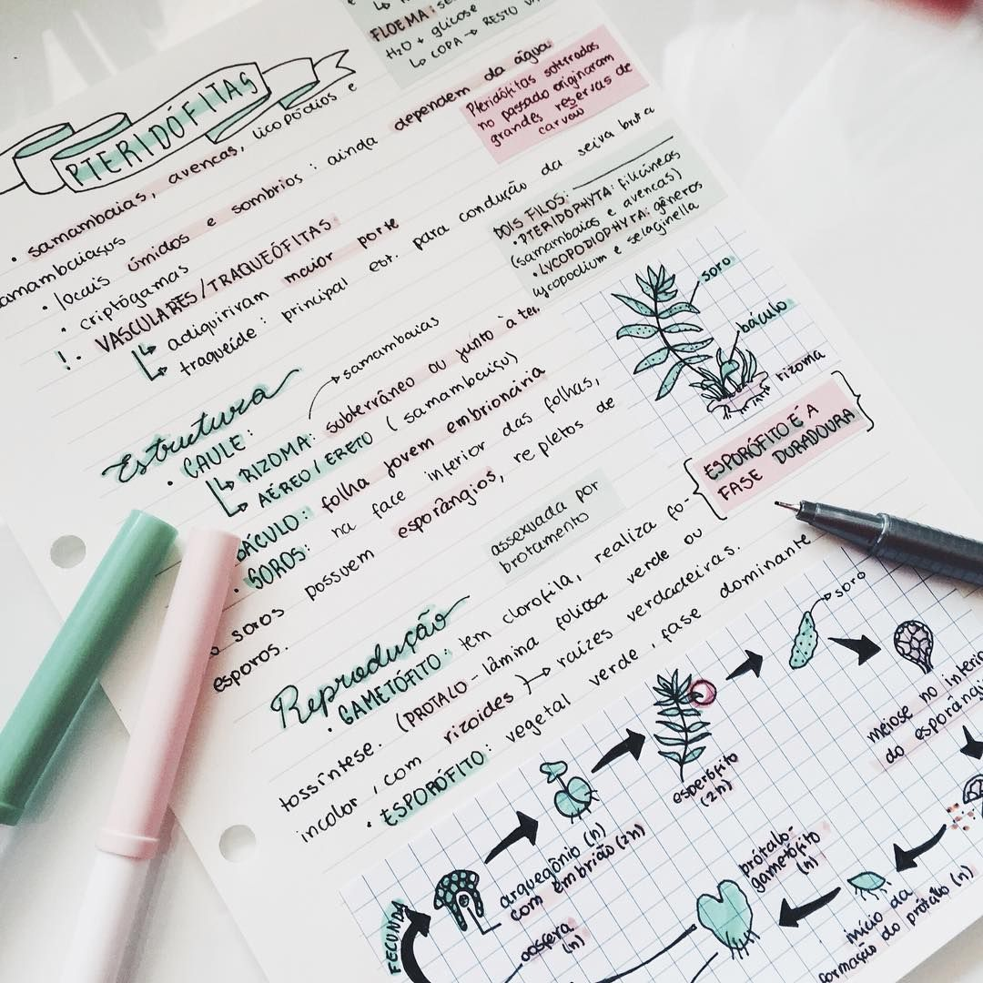 Last week's biology notes || #studyblr #study #studying # ...