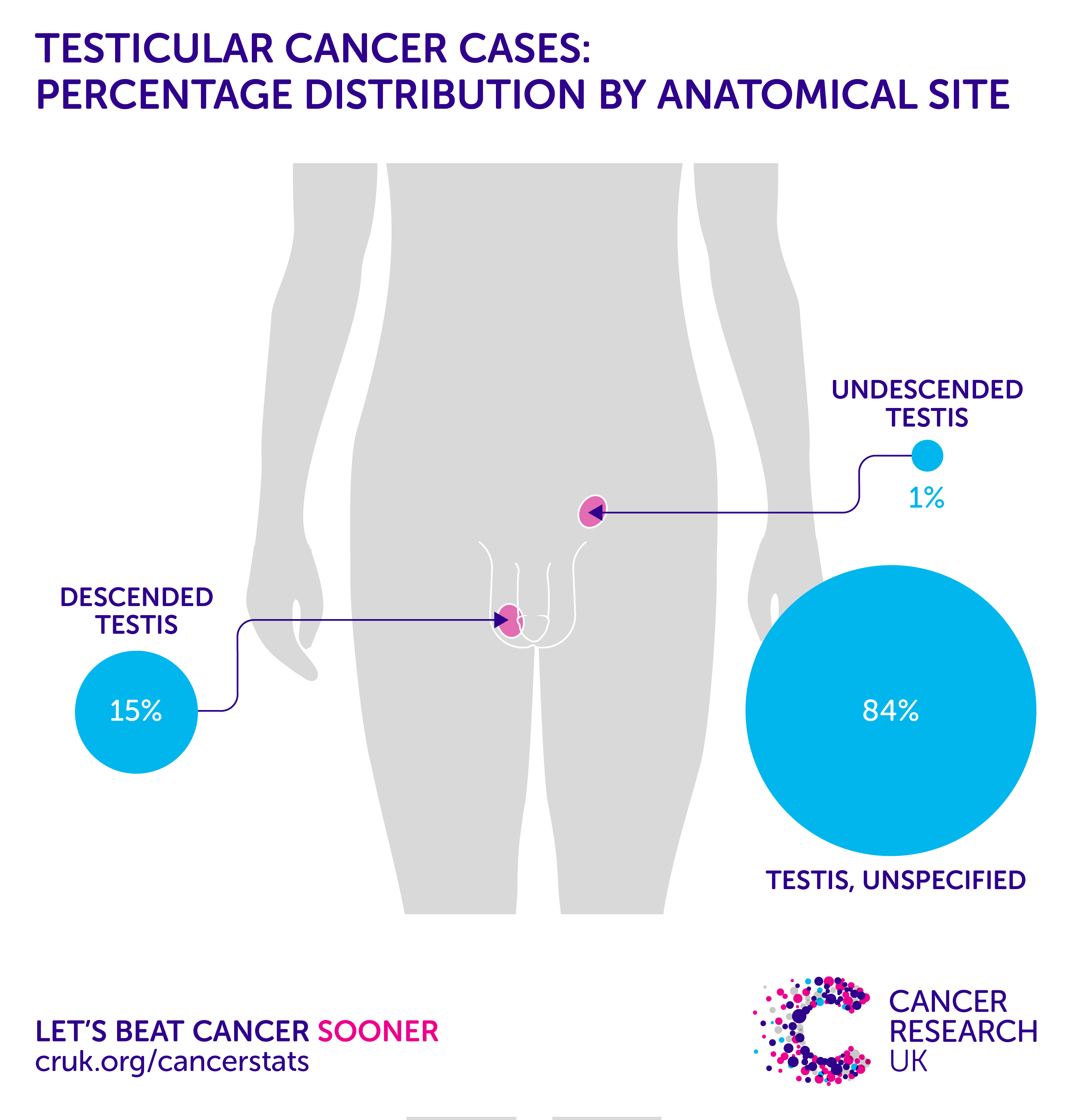 Testicular cancer incidence statistics | Cancer Research UK | Types ...