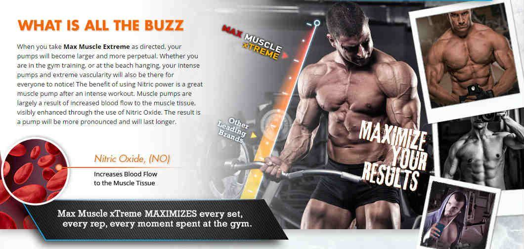 Muscle Max Extreme Side Effects Max Muscle Xtreme And Max Test