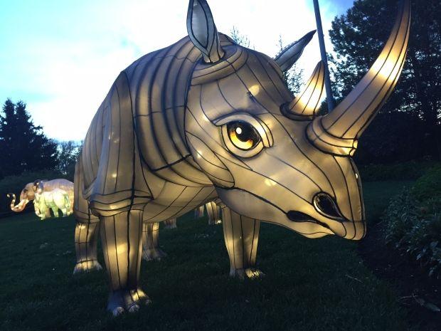 Lantern Festival Lights Up Calgary Zoo Calgary Stampede