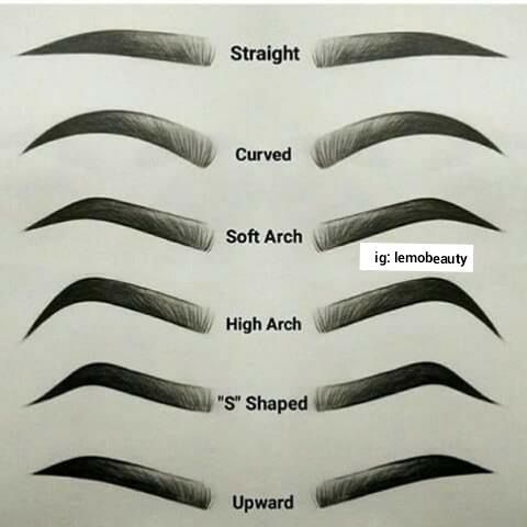 Photo of Eye brows