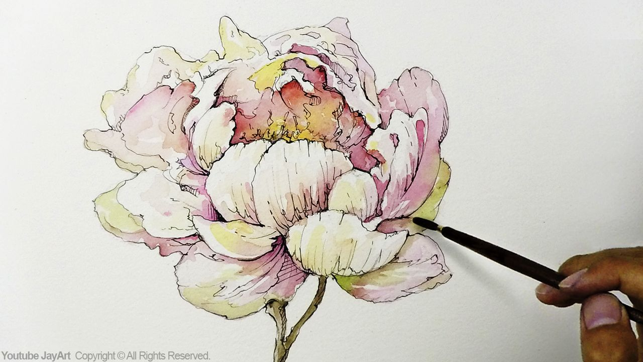 How to draw u paint a peony flower with ink and watercoloru art
