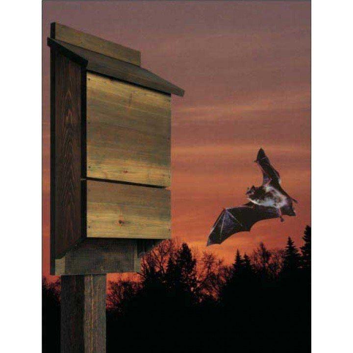 Bat house bungalow downloadable plan woodworking