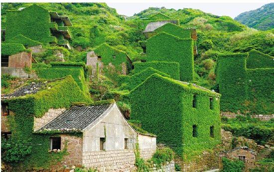 Green fairyland on Shengshan island | Natur kunst, Natur, Landschaft