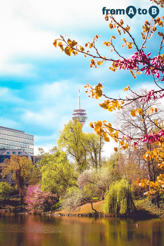 Das elegante, moderne und reiche Düsseldorf ist eine