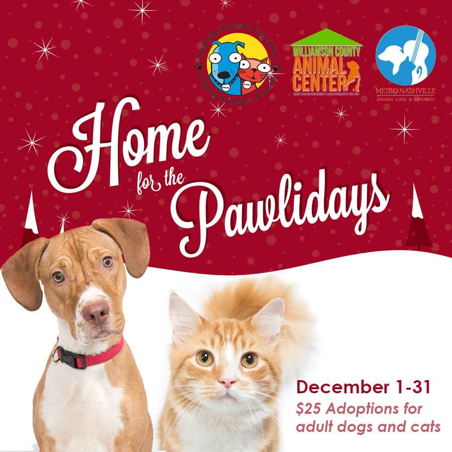 "It's ""Home for the Pawlidays"" time at Metro Nashville"