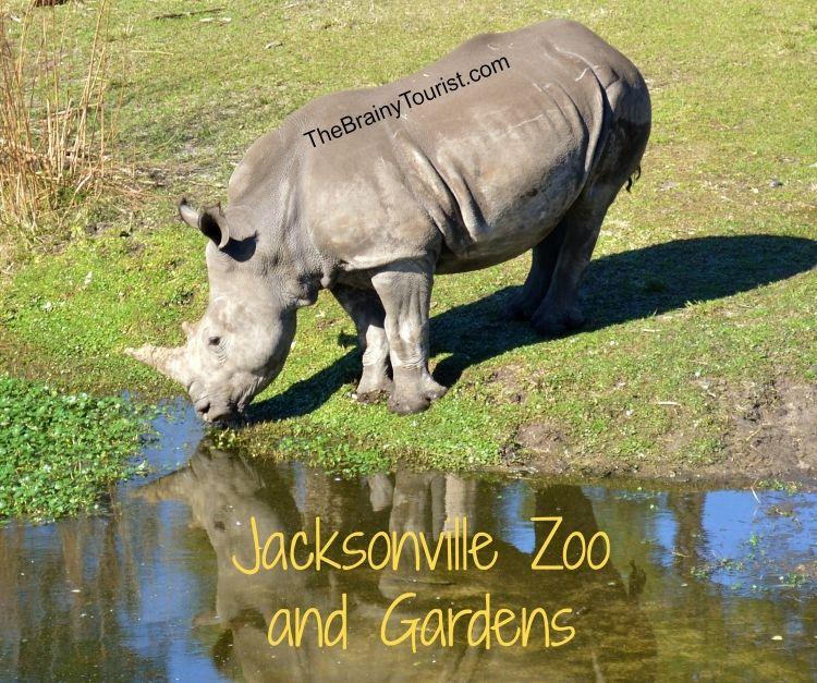 Jacksonville Zoo, Florida Family
