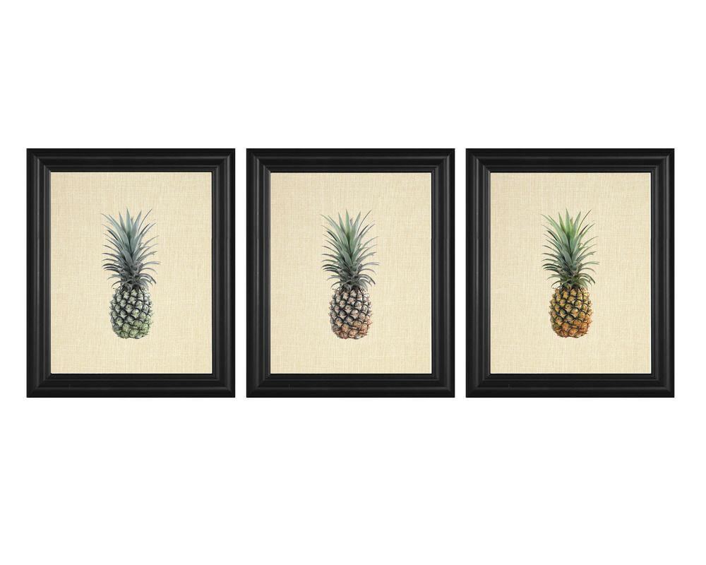 Details about pineapple tropical fruit picture set kitchen wall