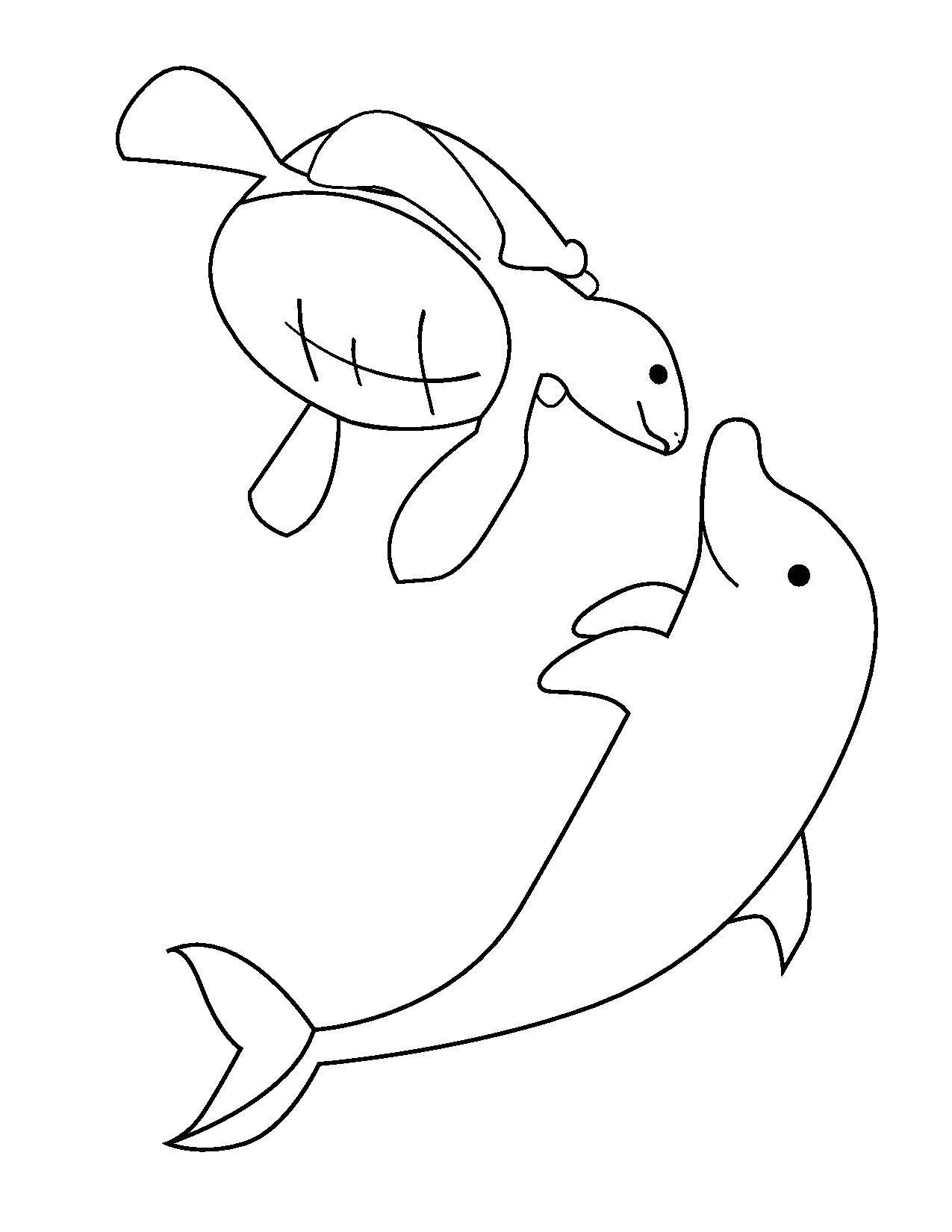 Okyanus Hayvanlari Calismalari Okyanus Hayvan