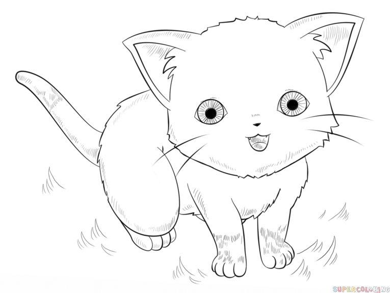 How to draw an anime cat step by step. Drawing tutorials
