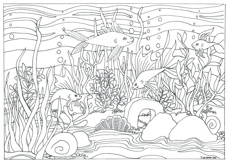 Free Coloring Pages Jungle Scenes Coloring Pages Coloring Pages Nature Fish Coloring Page