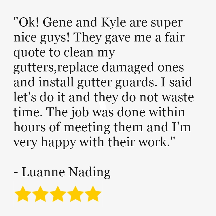 Another 5Star Customer Review! in 2020 Gutters, Fair