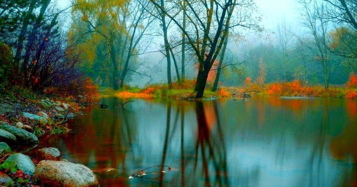 33 Gambar Pemandangan Alam Yg Cantik Pemandangan Indah Alam Semulajadi Relaks Minda Download Perlisaktif Cantik Sungguh Di 2020 Pemandangan Fotografi Alam Lanskap