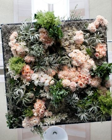 This living chandeliermade of air plants succulents carnations this living chandeliermade of air plants succulents carnations and juliet roses aloadofball Images